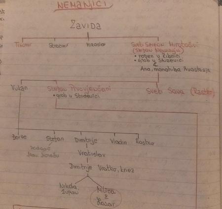 Rodoslov Nemanjića, koji sam sama napravila na osnovu istorijskih podataka. Na dnu uslikane stranice je Milica što pokazuje njeno porijeklo i mjesto u porodičnom stablu Nemanjića