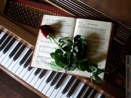 cimg5129-rose-on-music-book-on-piano-q85-500x375